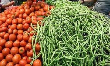 """种子是农业的""""芯片"""" 但很多育种单位还是停留在传统育种阶段"""
