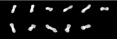 """揭开""""狗骨小行星""""系统形成之谜 帮助更好了解太阳系"""