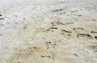 人類在大約2.3萬年前就踏上北美大陸 比此前認定更早
